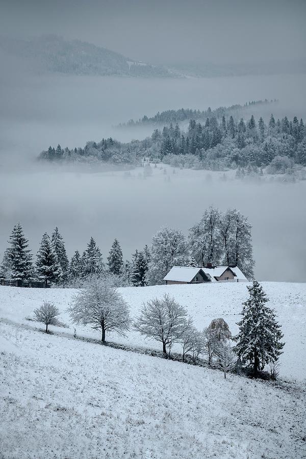 The first snow by Jaroslaw Blaminsky