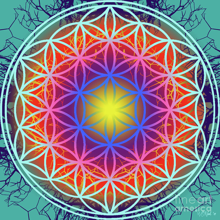 The Flower Of Life 3 by Walter Neal