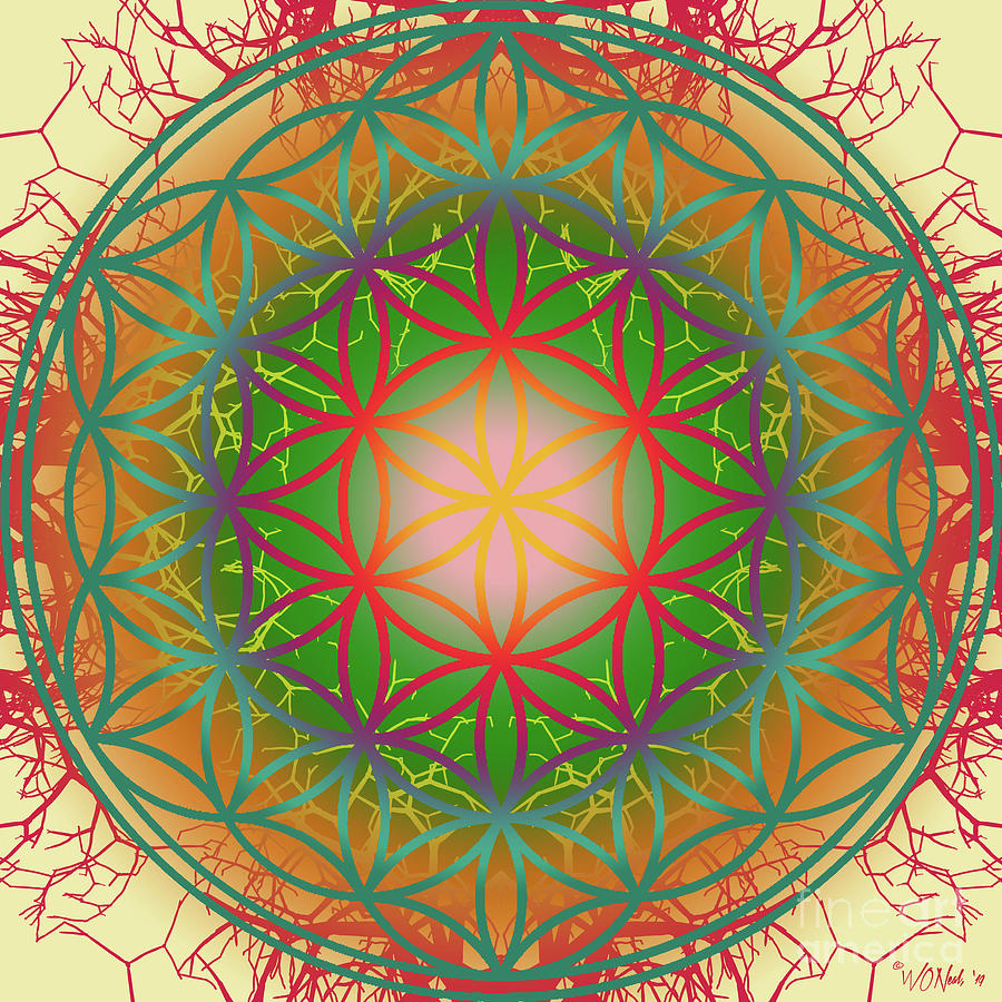 The Flower of Life 4 by Walter Neal