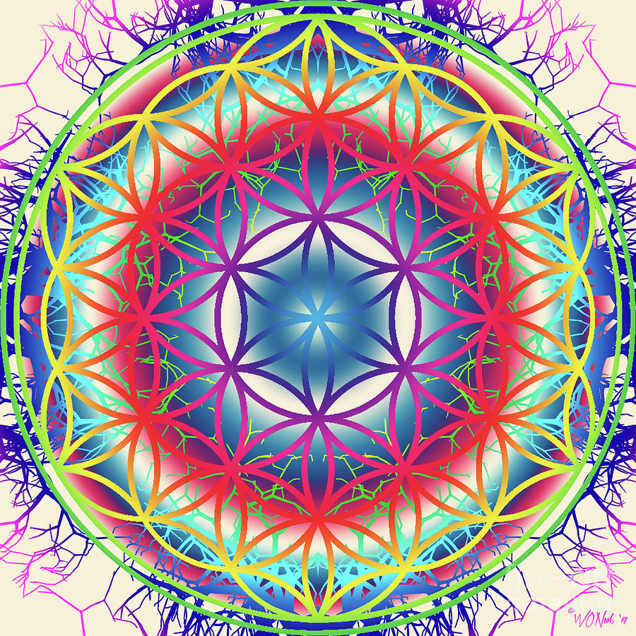 The Flower of Life 5 by Walter Neal