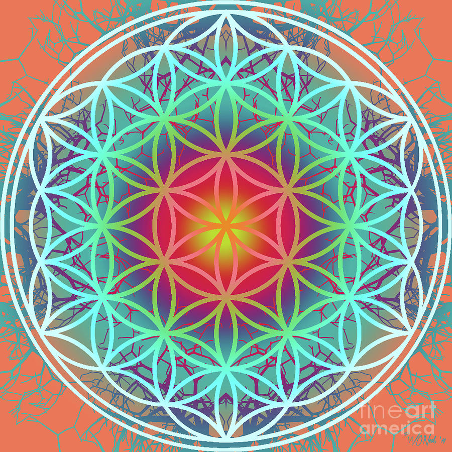 The Flower of Life 6 by Walter Neal