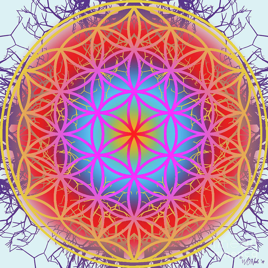 The Flower of Life 7 by Walter Neal