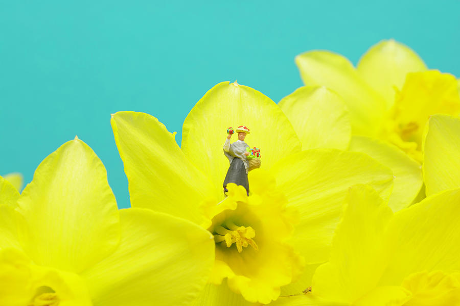 The Flower Lady With Daffodils 2 Photograph