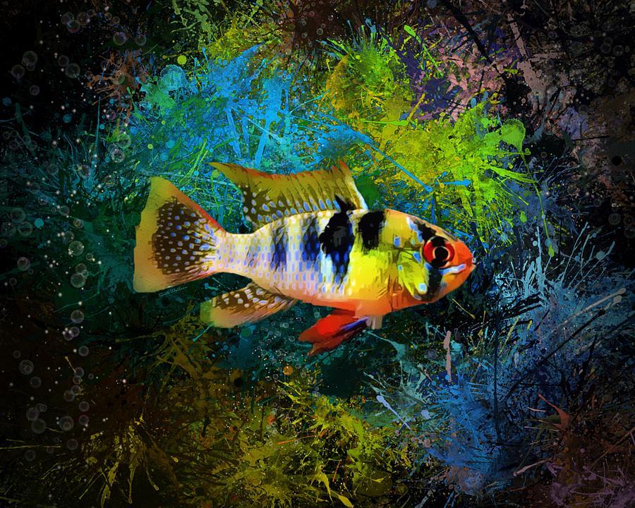 Freshwater Fish Digital Art - The German Blue Ram Cichlid  by Scott Wallace Digital Designs
