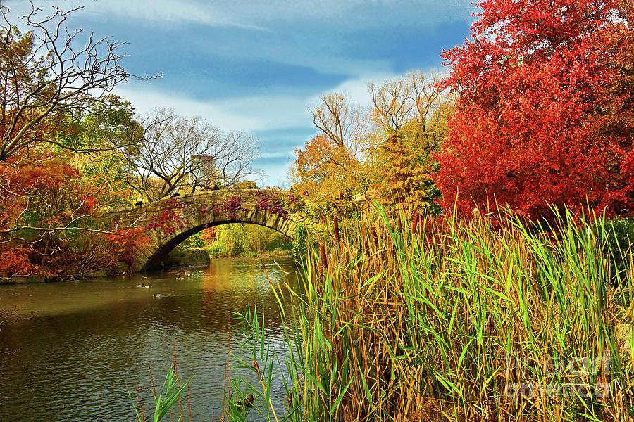 The Golden Pond at Central Park by Regina Geoghan