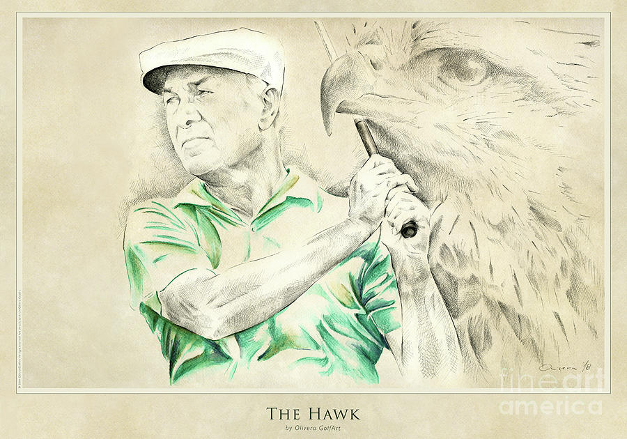 Golfer Painting - The Hawk - Poster by Olivera Cejovic