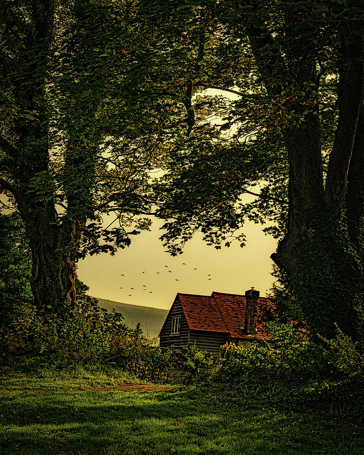 The House At The Edge Of The Forest by Chris Lord