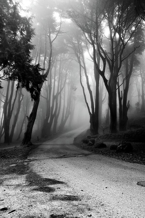 The Incantation Road Photograph