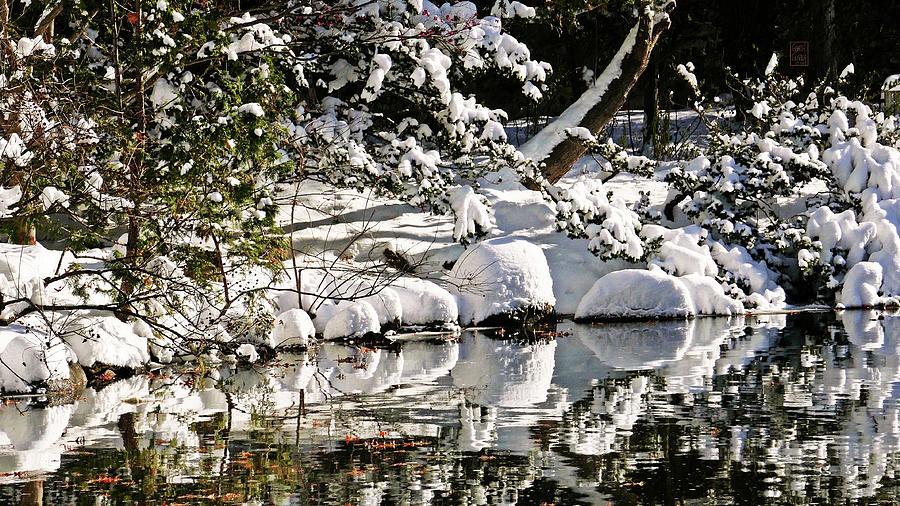 The Japanese Garden in Winter by Garth Glazier