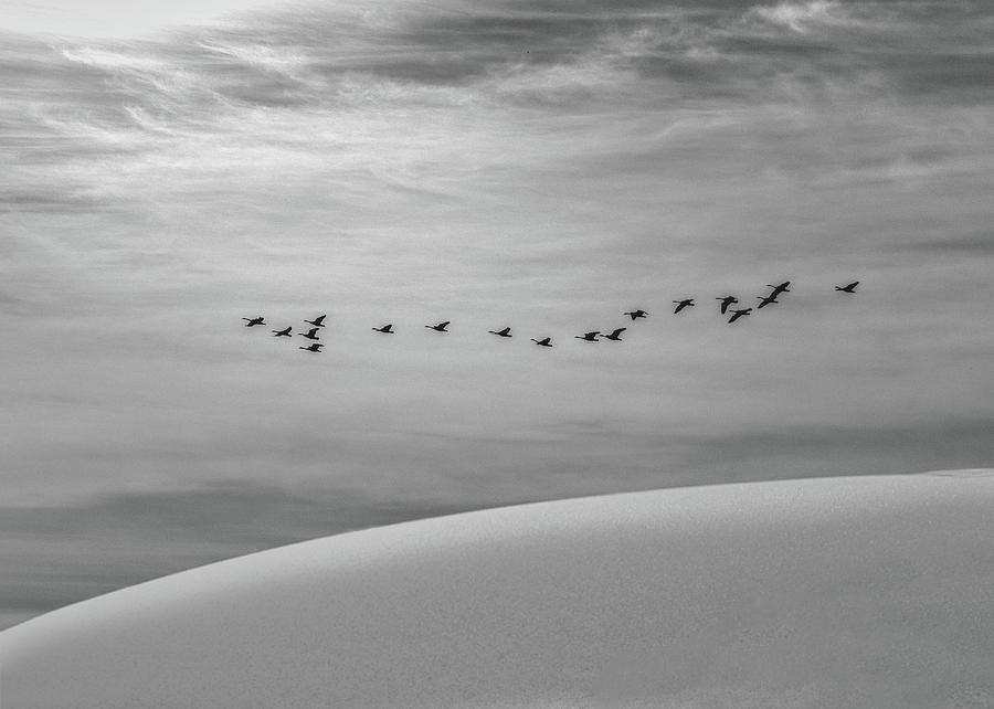 The Journey by Bob Orsillo