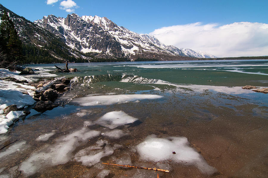 The Last Ice Photograph