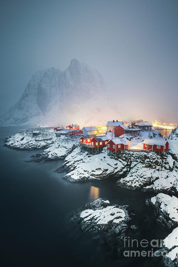 The Lights Called Home by Evelina Kremsdorf
