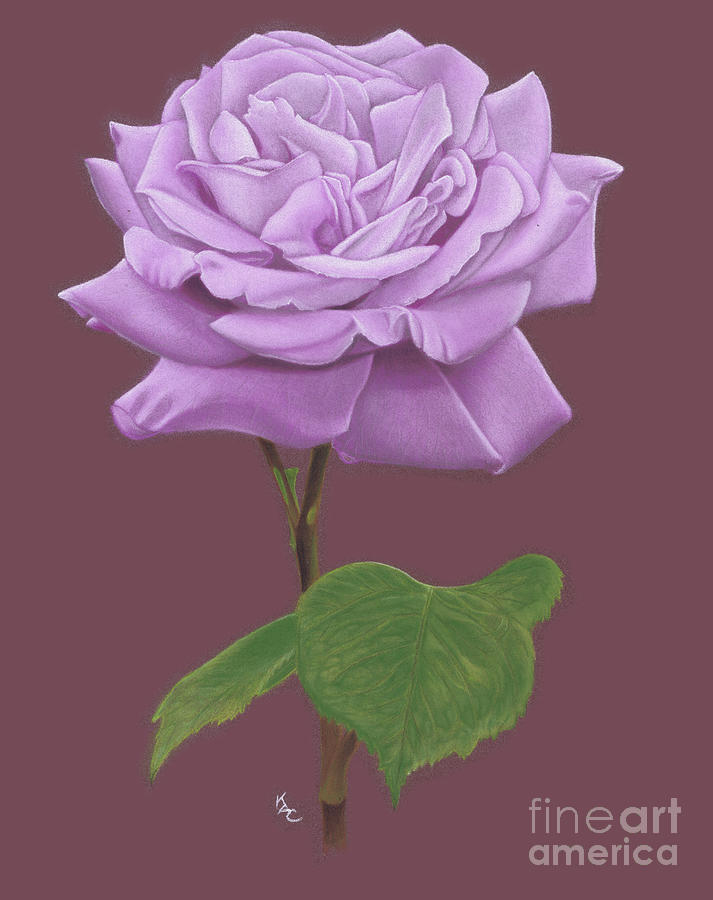 The Lilac Rose Painting