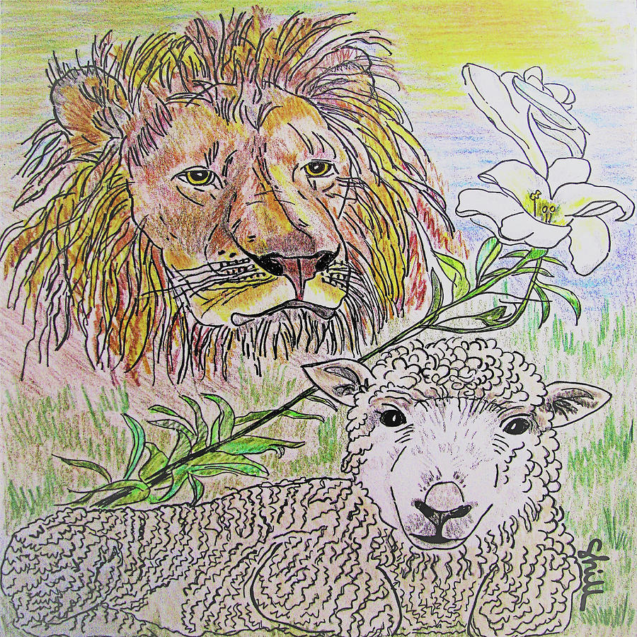 The Lion The Lamb And The Peace Lily Drawing