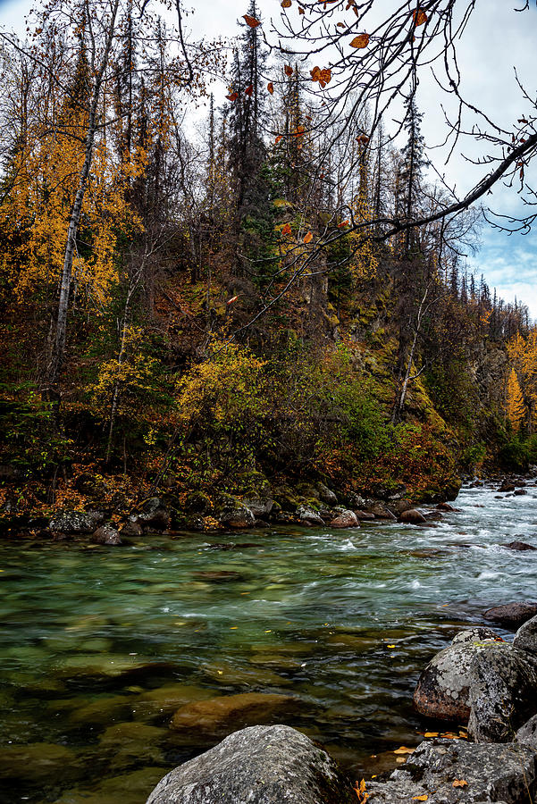 The Little Susitna River Photograph