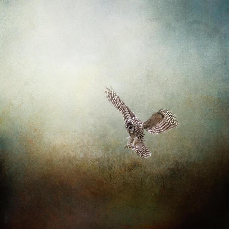 The Lone Hunter by Jai Johnson