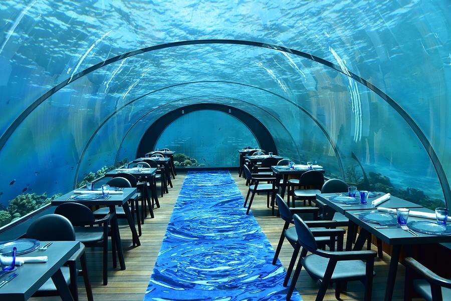 The Maldives Undersea Restaurant Photograph