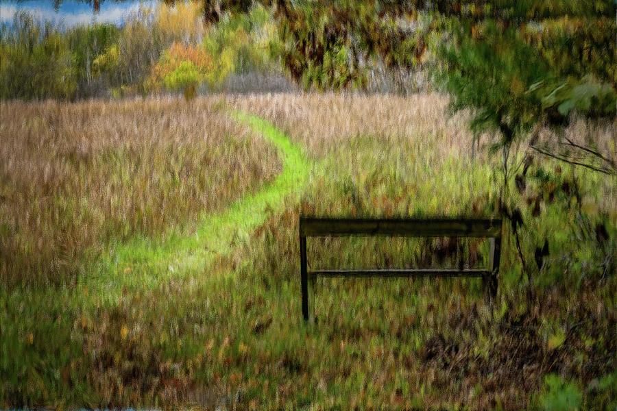 The Meadow by David Heilman