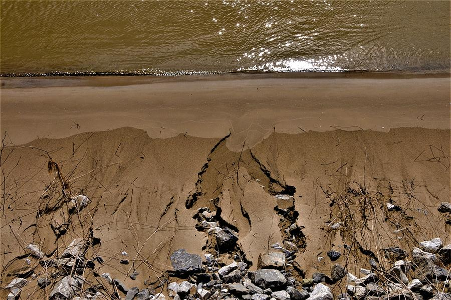 River Photograph - The Muddy Miss by Leon Hollins III