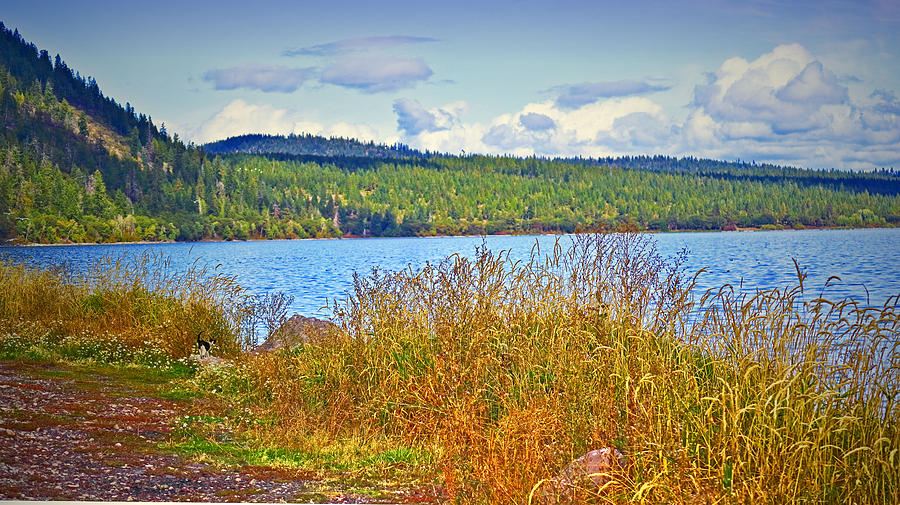 The Natural Beauty Of Upper Klamath Lake by Joyce Dickens
