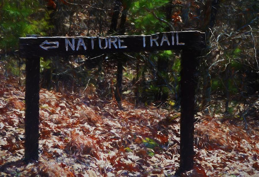 The Nature Trail Version 2 Photograph