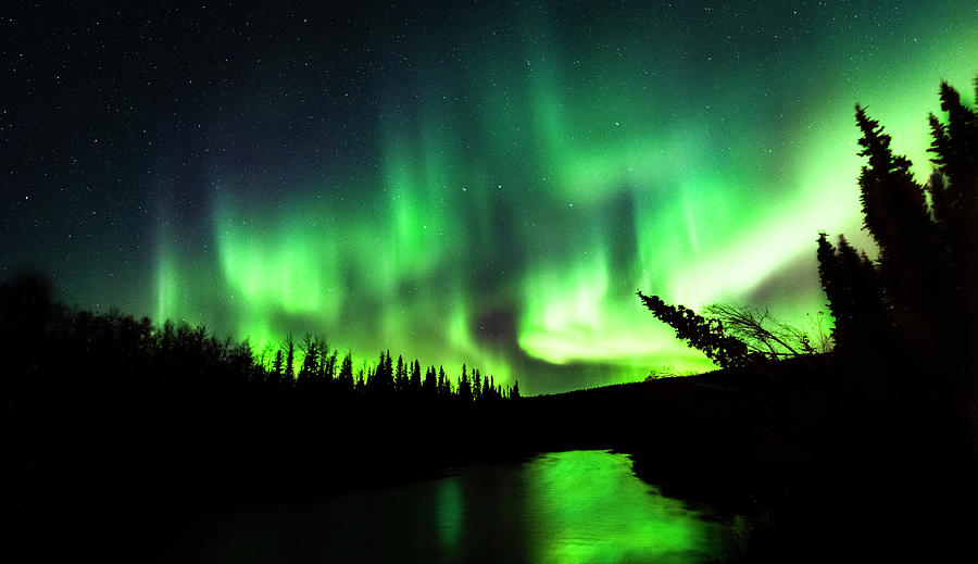 The Northern Lights Over The Chena River Photograph