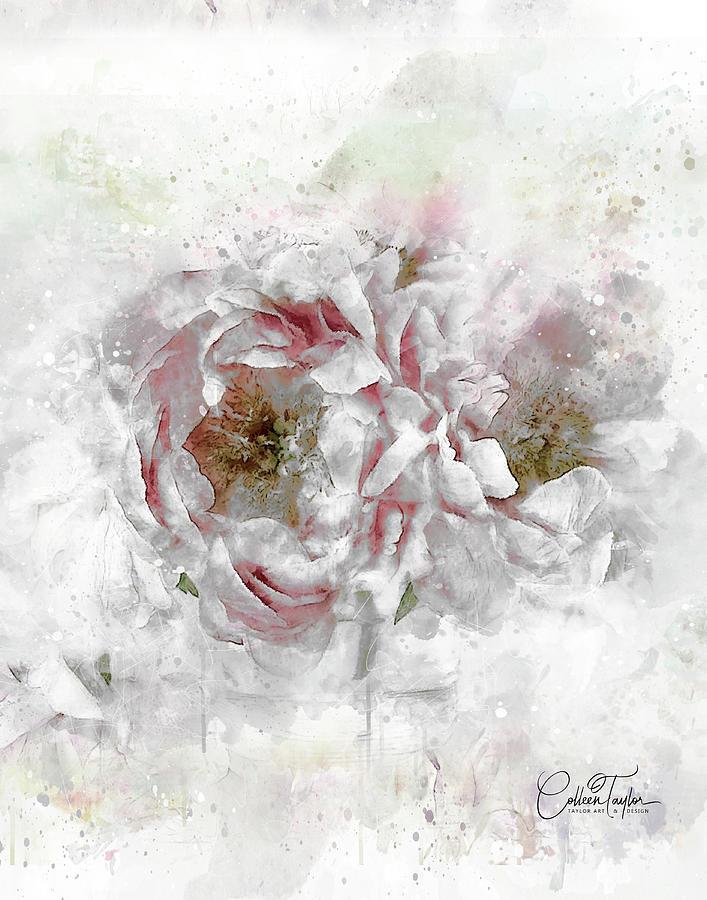 The Opulent Roses Mixed Media