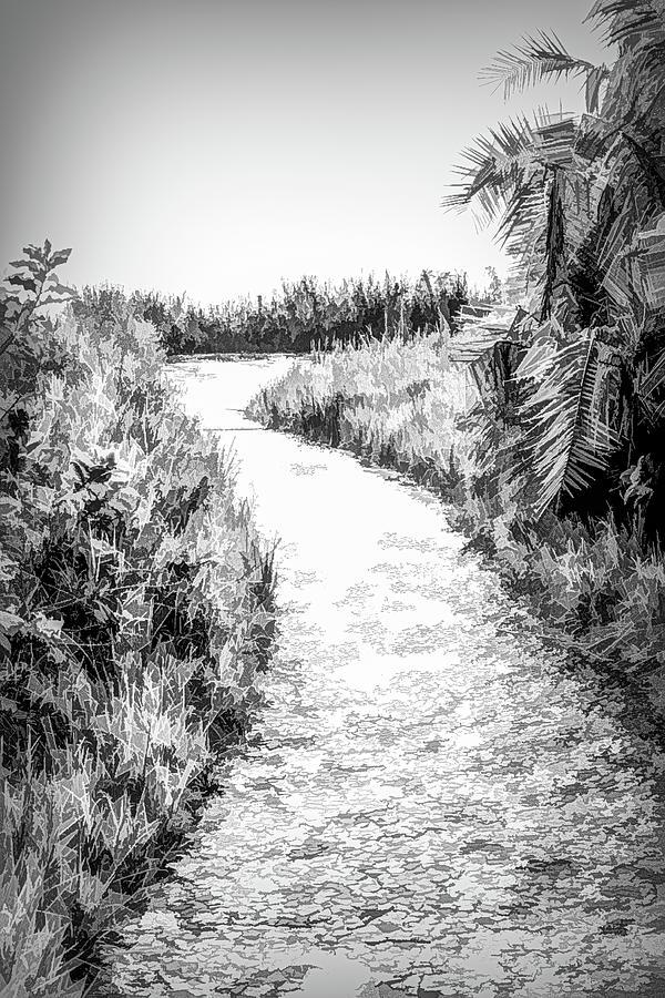 The Path Along Victoria Falls by Douglas Wielfaert