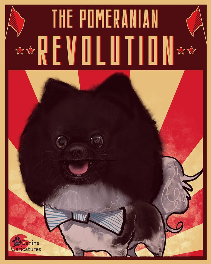 The Pomeranian Revolution Drawing