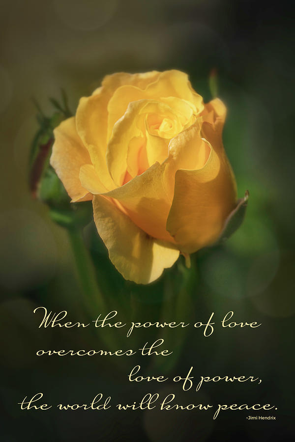 The Power Of Love Photograph