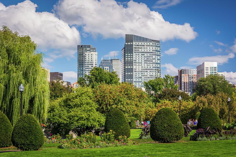 The Public Garden 03 Photograph