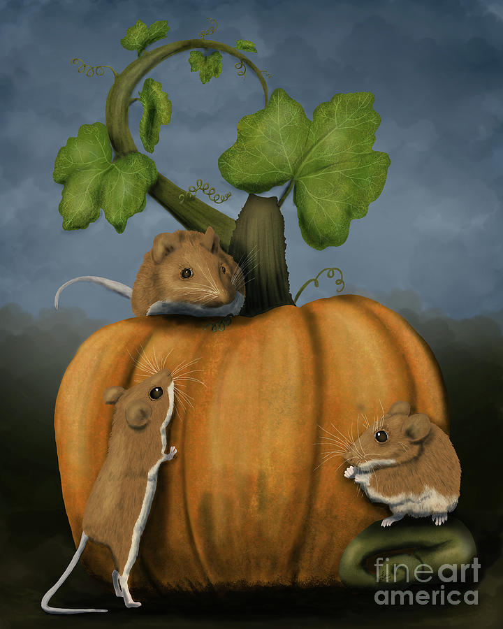 The Pumpkin Mice by Lisa Marie Ford