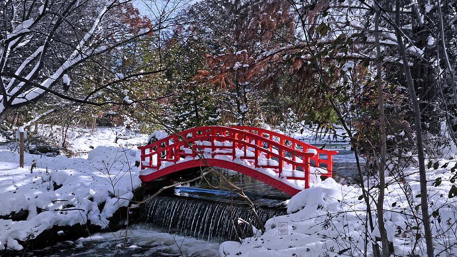 The Red Bridge by Garth Glazier