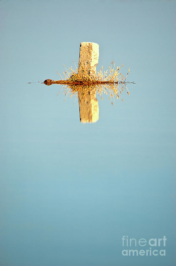Vertical Photograph - The Reflection Of The Stone Mark by Vicente Sargues