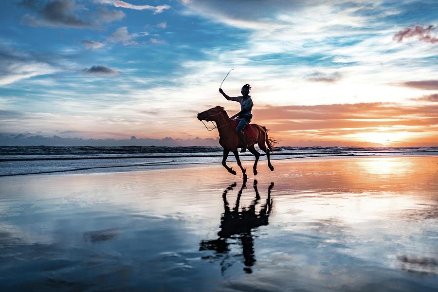 Horse Photograph - The Ride by Nihab Rahman