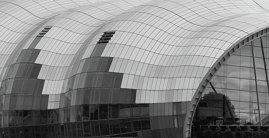 The Sage Abstract Photograph
