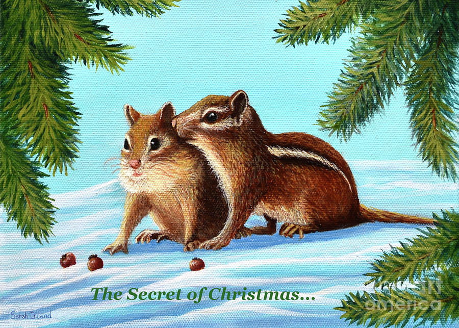 The Secret of Christmas... by Sarah Irland
