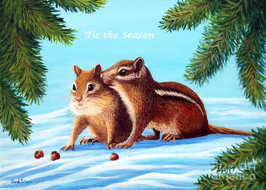 The Secret - 'Tis the Season by Sarah Irland