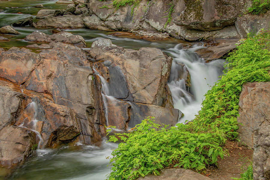 The Sinks, Great Smoky Mountains National Park by Marcy Wielfaert