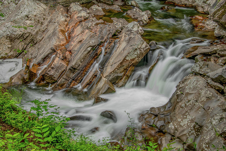 The Sinks in Summer, Great Smoky Mountains by Marcy Wielfaert