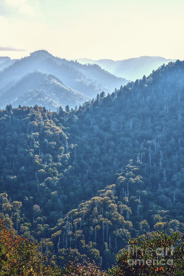 The Smoky Mountains by Phil Perkins