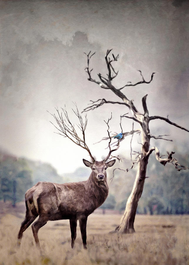 The Stag And The Bluebird Digital Art