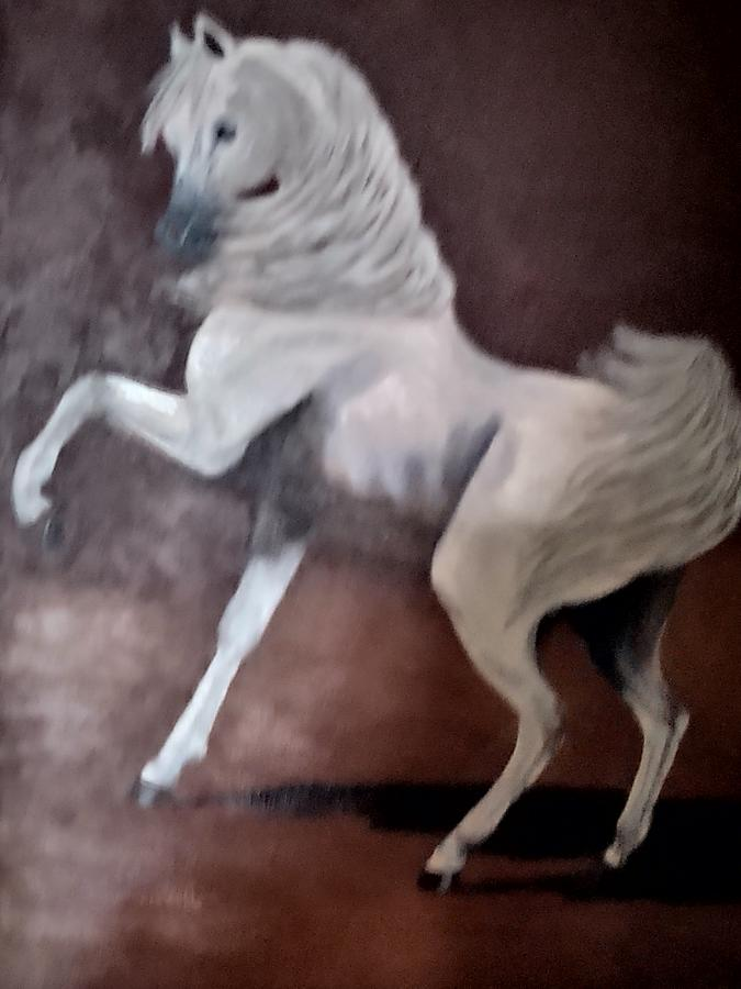 Horse Painting - The Stallion by Diana Cochran