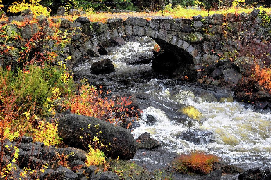 The Stone Arch Bridge by Wayne King
