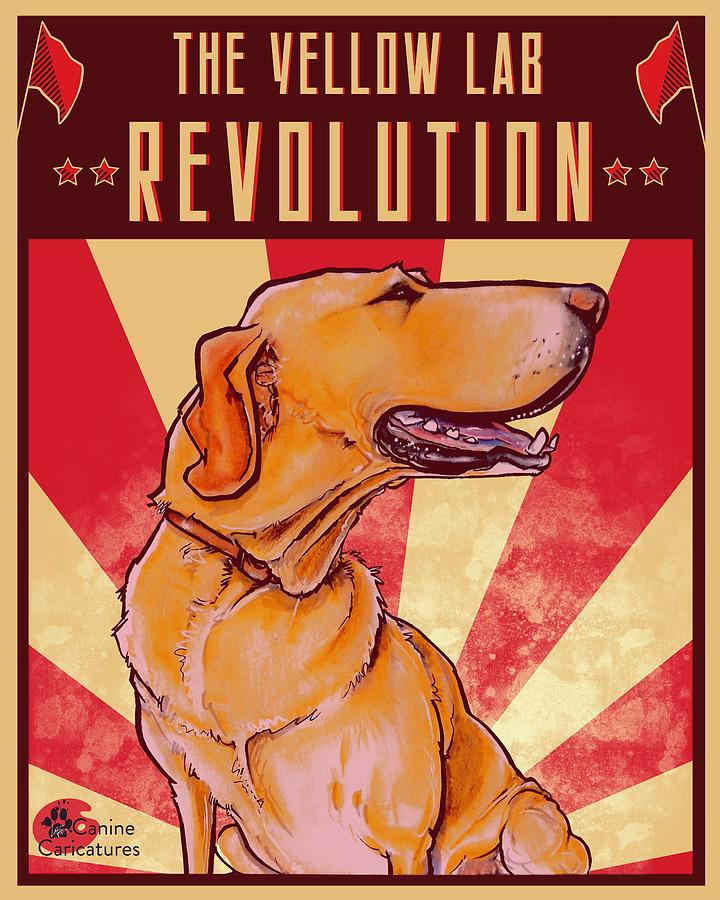 The Yellow Lab Revolution Drawing