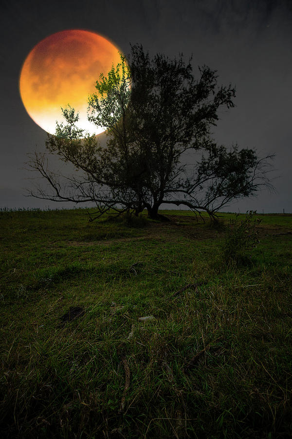 Blood Moon Photograph - Theres Blood On The Moon by Aaron J Groen