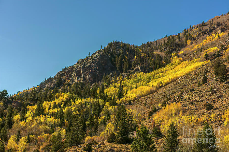 There's Gold on Them Thar Hills by Jon Burch Photography