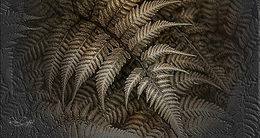 This Fern Is Toast by Rene Crystal