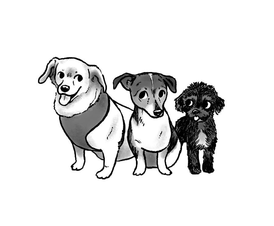 Three Amigos - dooadollop Drawing by Claire DeWilde