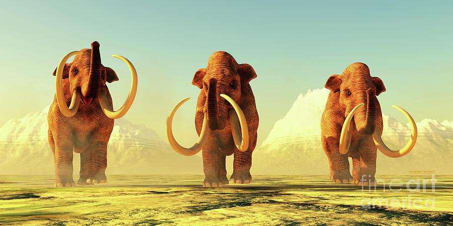 Three Columbian Mammoths Digital Art